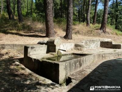 Pinares de Piedralaves; excursiones desde madrid cerezos en flor valle del jerte nacimiento del río